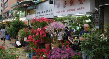 Flower Market .png