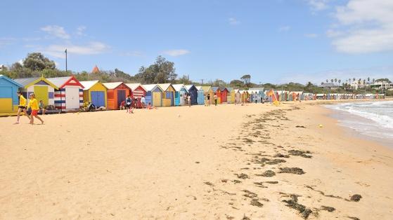 Enjoy-Long-Walks-On-Brighton-Beach