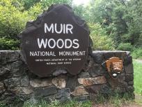 Nuir Woods