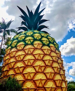Big Pineapple