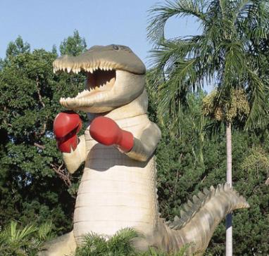 Boxing Croc