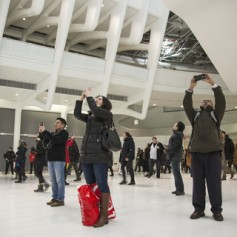 Oculus Tourists